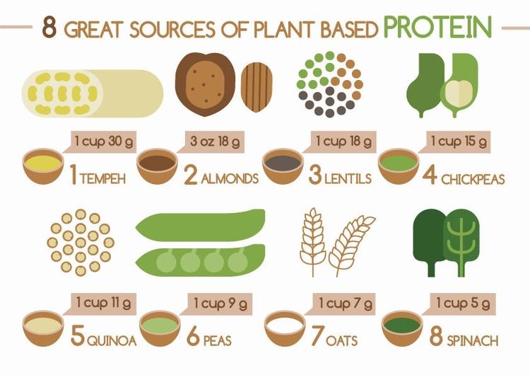 Dieta plant based cardapio